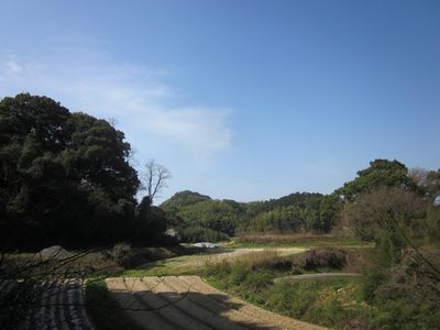 hatasora2013.3.12.jpg