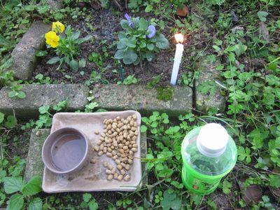 tototukimeiniti2011-11.jpg